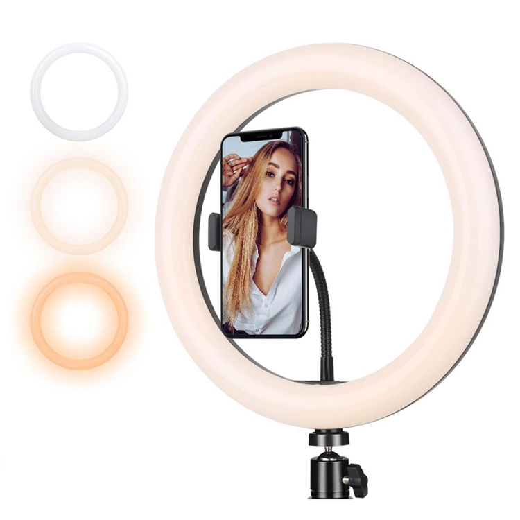 10 Inch Spare Ring Light 3606454